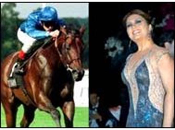 Sibel'e servet değerinde at